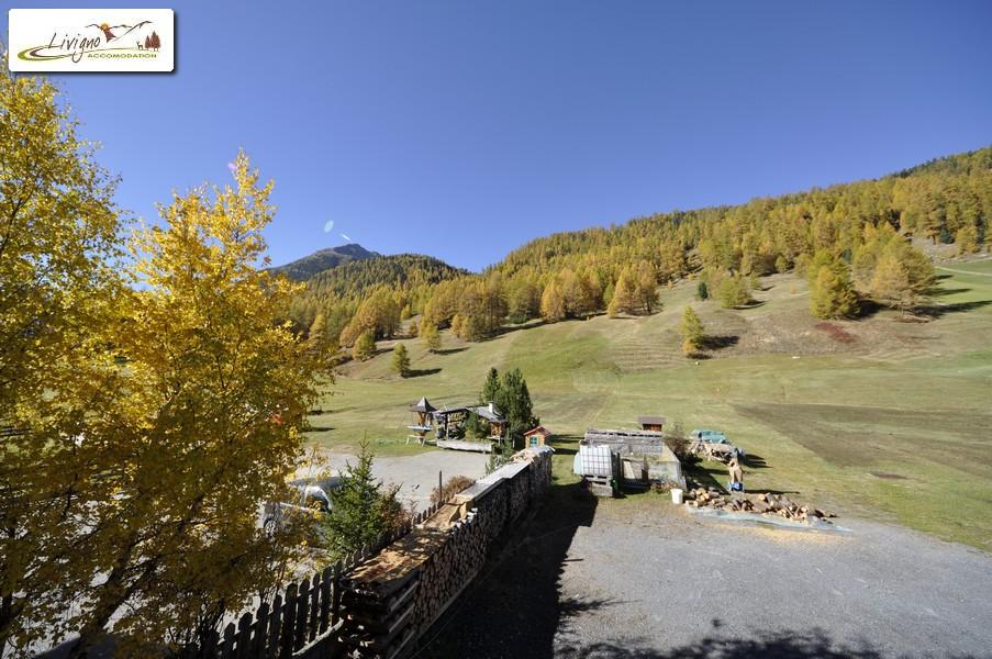Appartamenti Livigno - Casa Florin - Giumel (17)