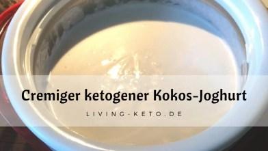 Read more about the article Kokosjoghurt