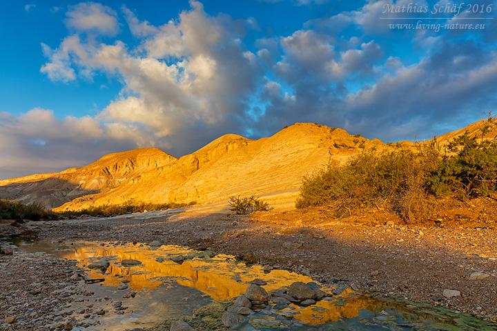 Landschaft_Israel_5DSR_20491