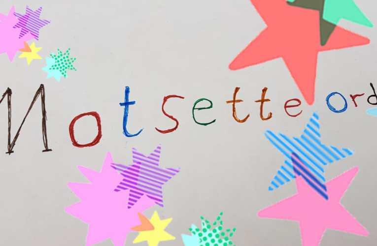 Motsette ord (1)