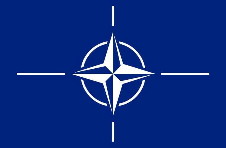 NATO (3)