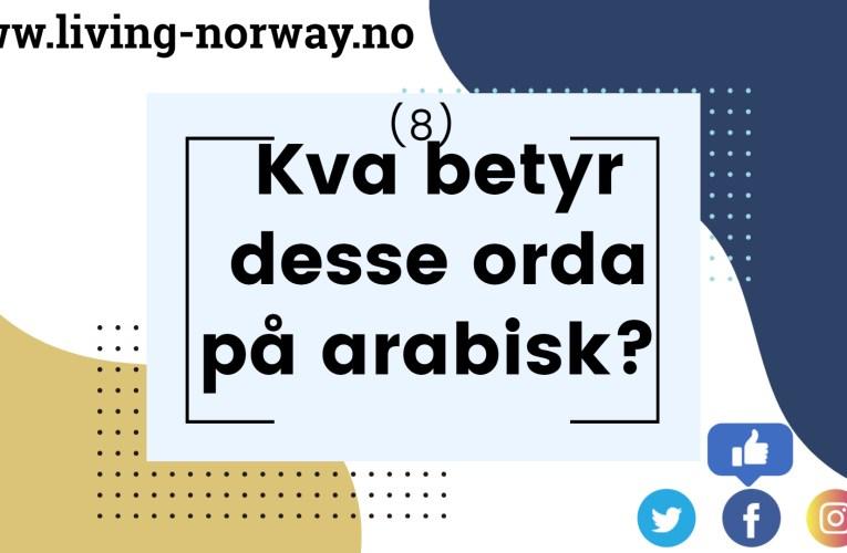 Kva betyr desse orda på arabisk? (8)