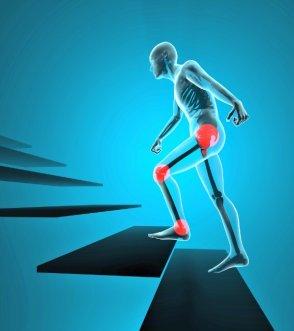 Dos áreas comunes para Puntos Fibromyalgia disparador que pueden interrelacionarse son el área pélvica y luego hacia abajo en el interior de ambas rodillas.