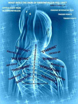 descripción del dolor fibroideo de la parte superior de la espalda