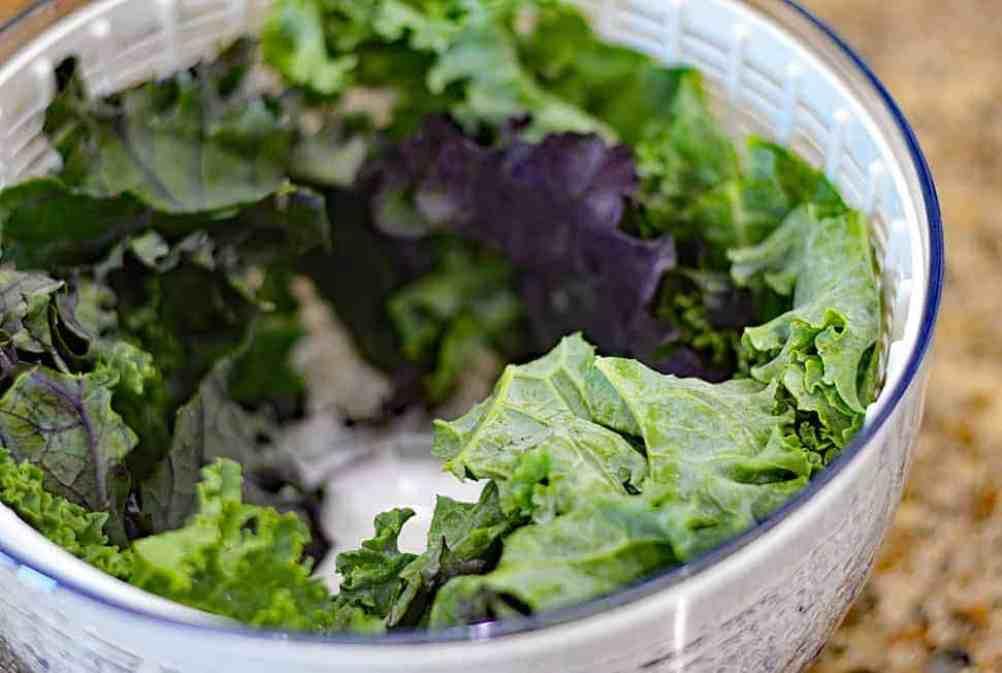 Kale spun dry in salad spinner basket