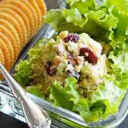 Close Up of Vegan Cranberry Walnut Chickpea Salad Recipe