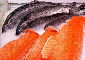 Salmon (Salmone) (Salmo salar)
