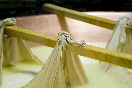 Making Parmigiano-Reggiano cheese by Claudio Maneti