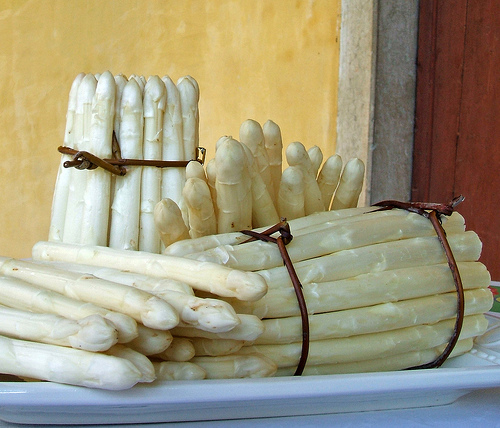 White asparagus by Bassano del Grappa