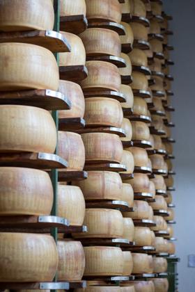 Wheels of Parmigiano-Reggiano