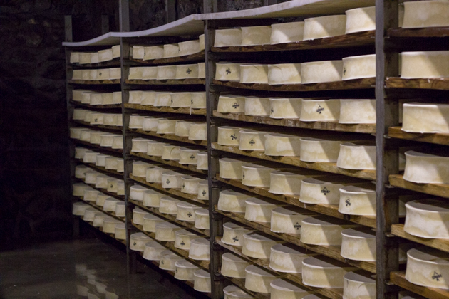 The cheese aging