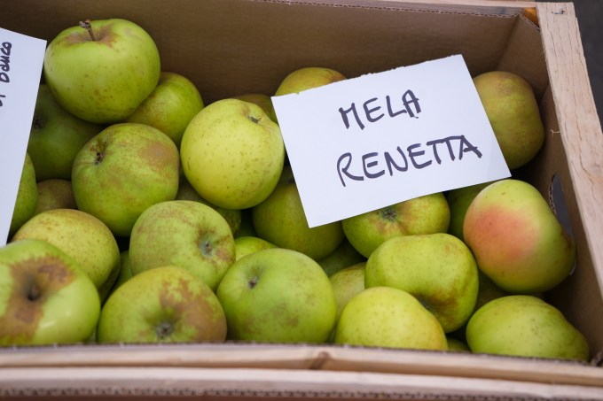 Renetta apples- perfect for desserts