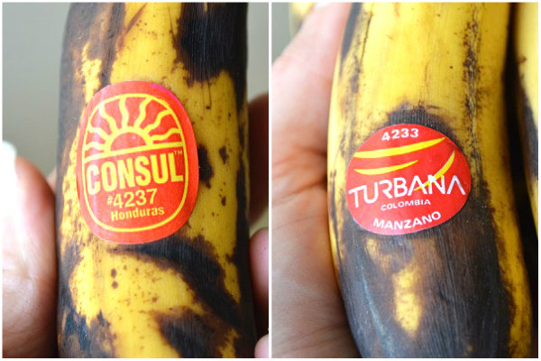 Bananas-Side-by-Side