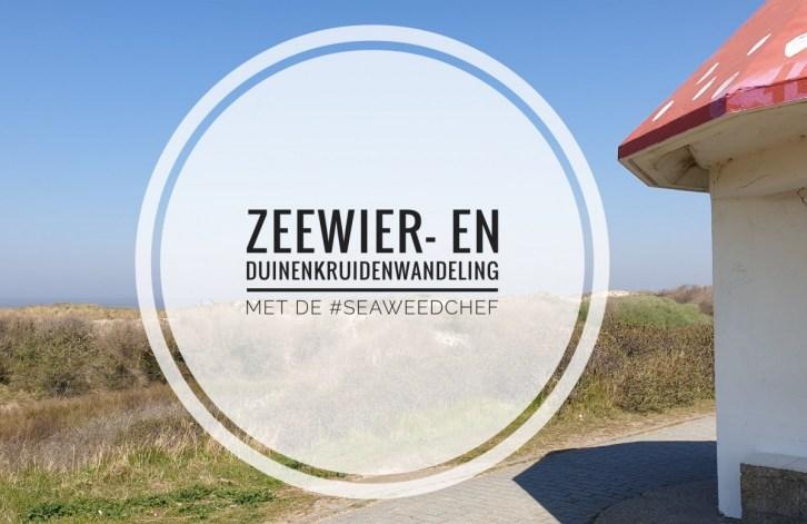 Zeewier- en duinenkruidenwandeling met de seaweedchef