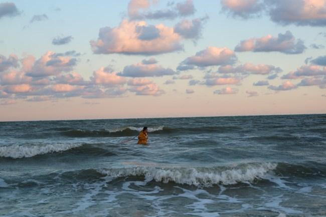 Garnaalkruien in zee