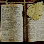 5 Simple Tips for Studying the Old Testament