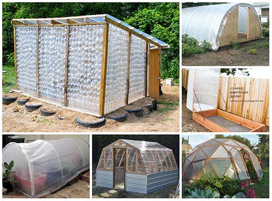 10 Stunning DIY Greenhouses You Can Make