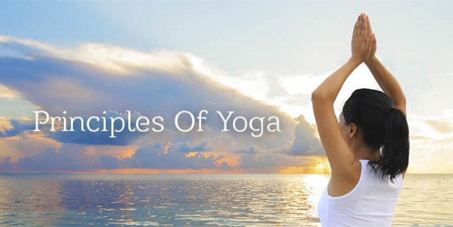5 Important Principles of Yoga