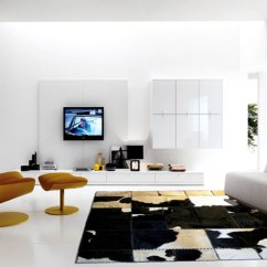 Living Room Rugs Ideas Furniture For Small 12 Modern Homes Livinghours