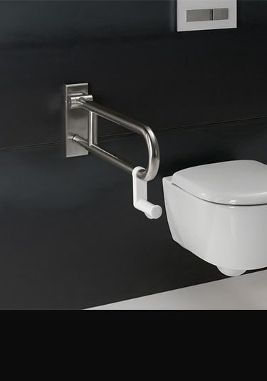 Toilet Grab Bars  Shower Grab Rails by Livinghouse