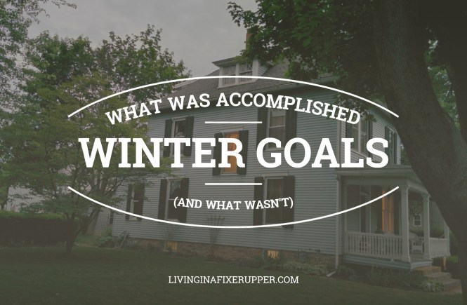 WINTER HOUSE PROJECT GOALS 2017