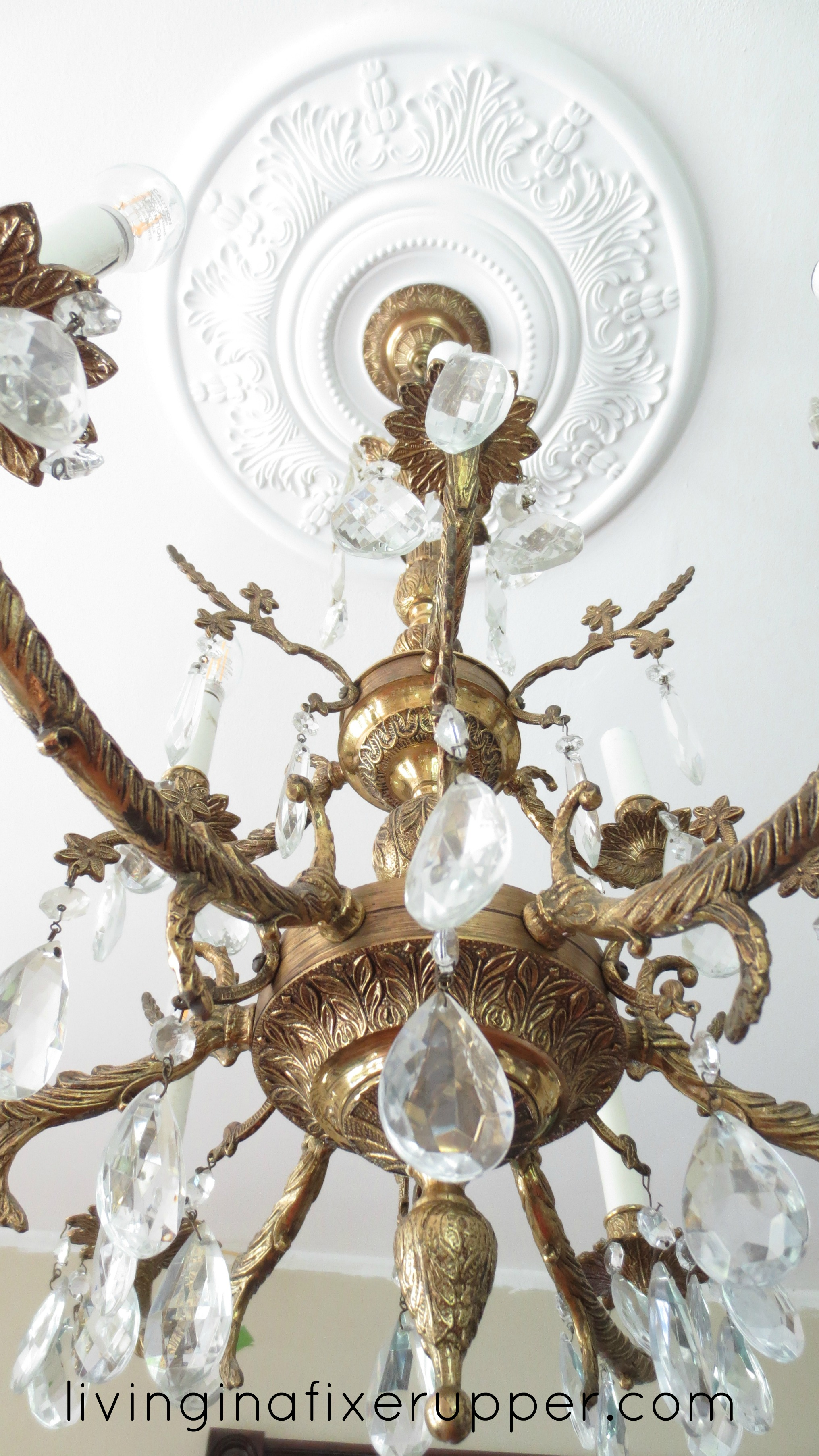 ceiling com pictures project pin blogs chandelier medallion architecturaldepot traditional