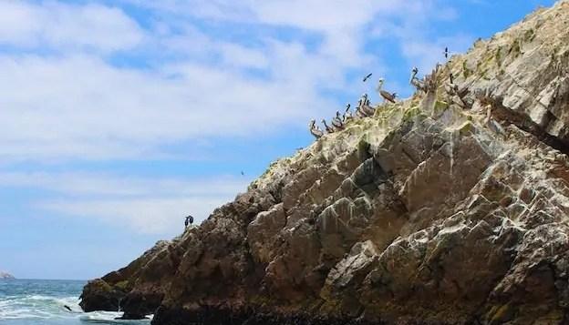 Take a Trip to Islas Ballestas