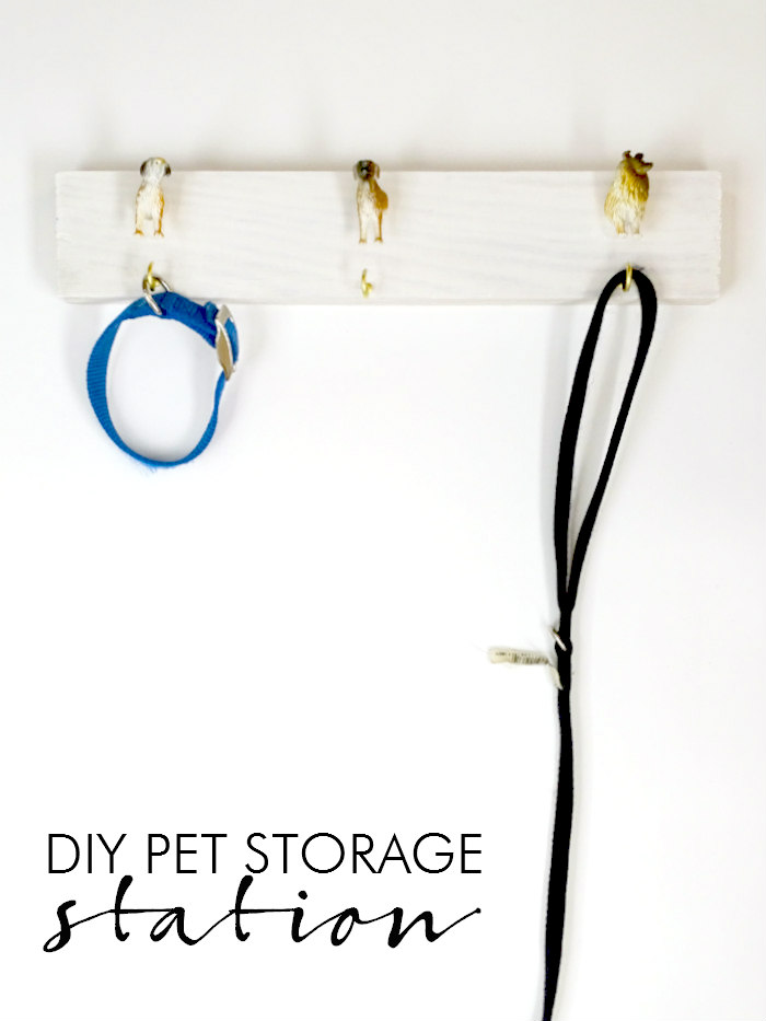 DIY Pet Storage Station