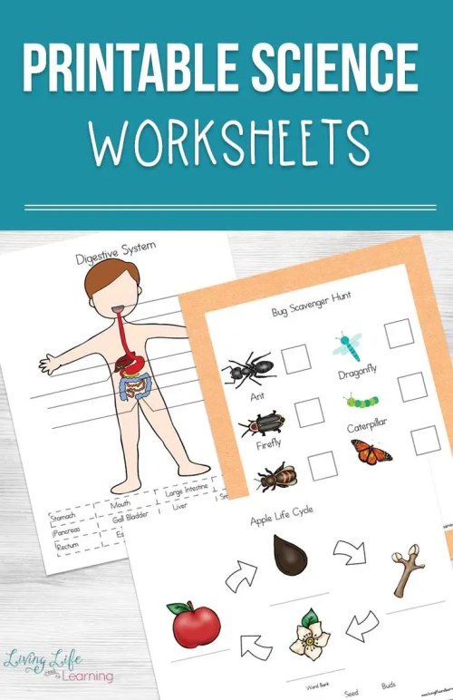 small resolution of Printable Science Worksheets for Kids