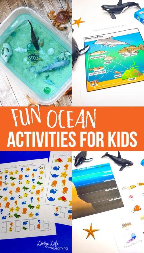 small resolution of Fun Ocean Activities for Kids