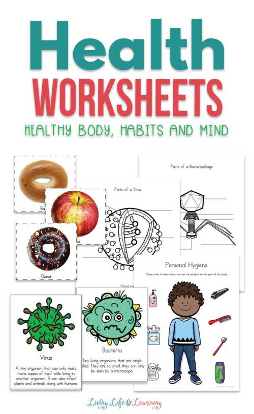 small resolution of Health Worksheets for Kids