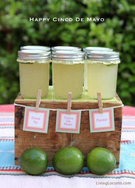 Cinco de Mayo Party Ideas - Margarita Recipe - Free Printables