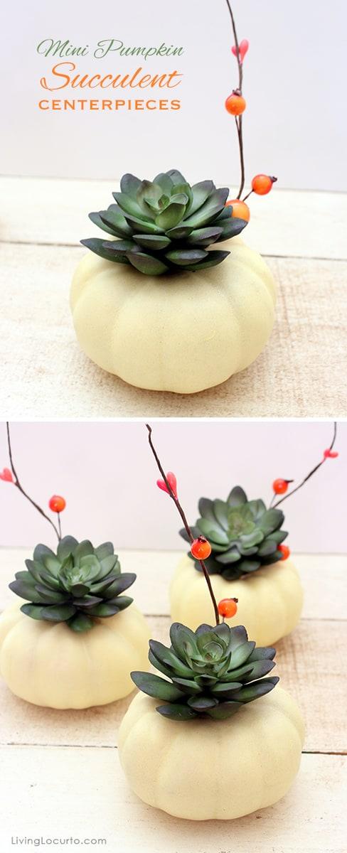 pumpkin succulent diy craft