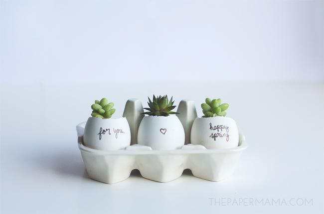 decor-inspiration-succulent-planters-ideas-4