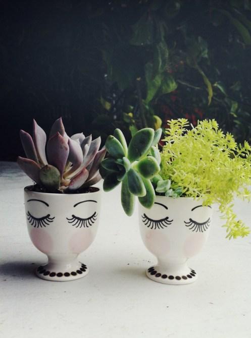 decor-inspiration-succulent-planters-ideas-5