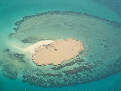Farasan Islands Album - Living Oceans FoundationLiving ...