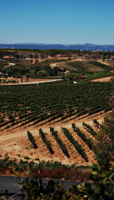 Living on Saltwater - Travels to California - Winery
