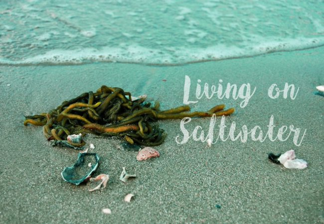 Living on Saltwater
