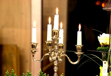 Candles/Table Lamps/Plants