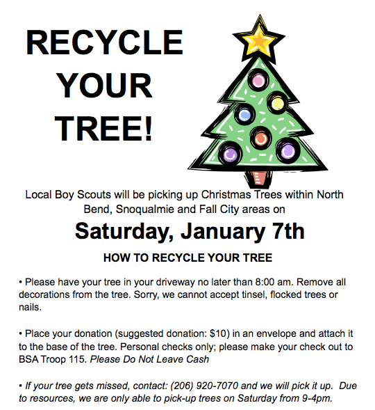 Boy Scouts BIG Christmas Tree Pickup happens this Weekend - Living ...