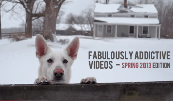 Some Fabulously Addictive Videos – Spring 2013 edition