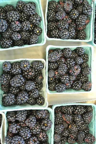 Beautiful blackberries - Farmers Market with Living With Color Designs