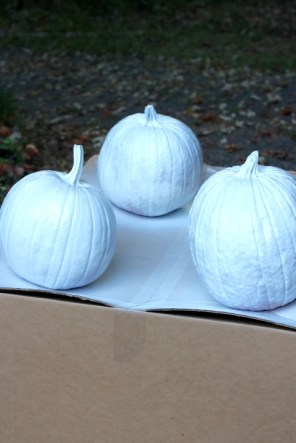 Chinoiserie Pumpkin: Living With Color Designs Blog- Punpkins sprayed with white primer