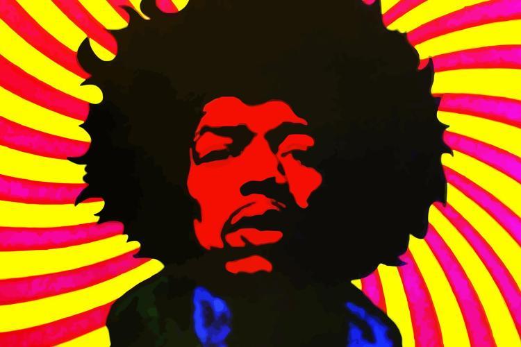 The Jimi Hendrix Experience 1463816