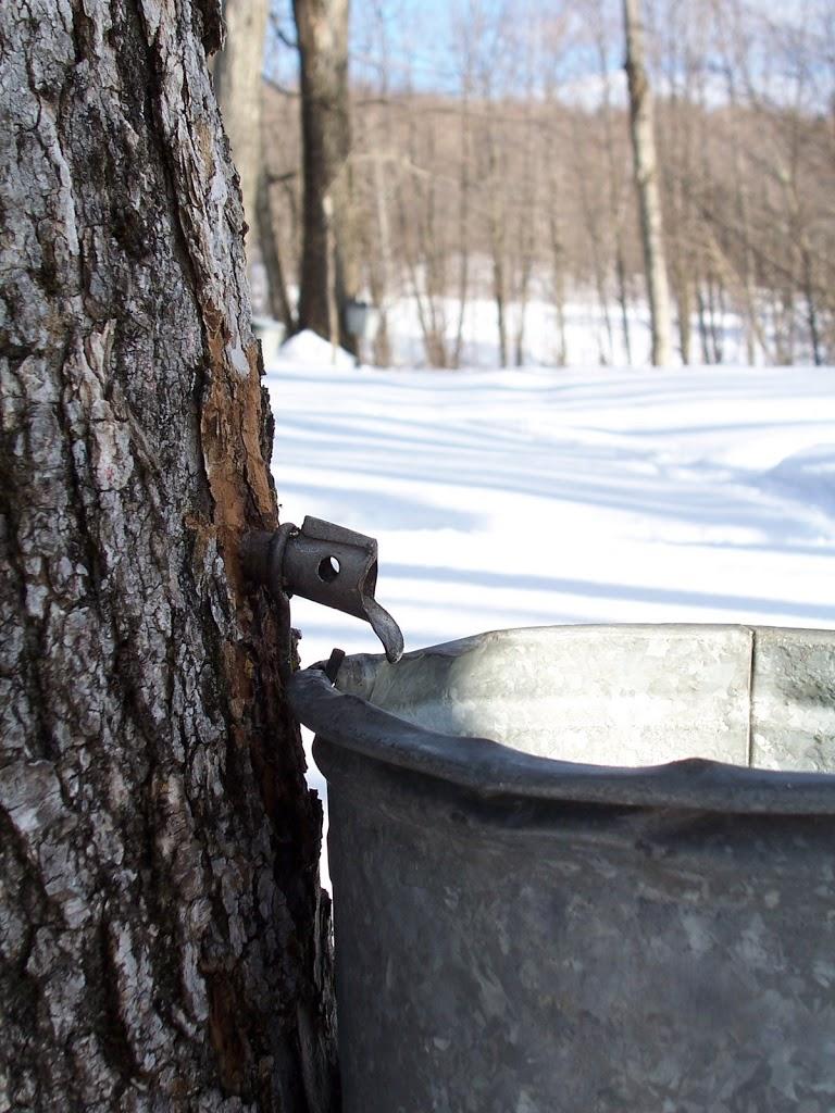 Sugarin'- A Vermont Tradition