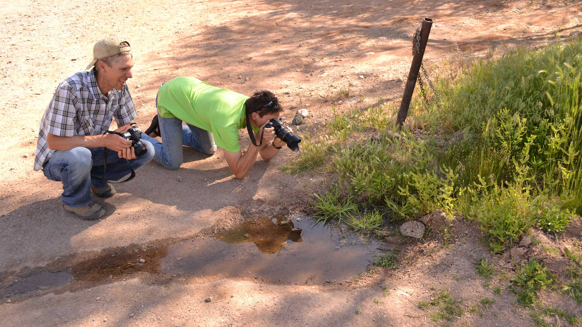 Photographing a rattlesnake