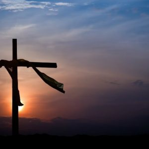 """We Would Like to See Jesus"" – John 12:20-33"