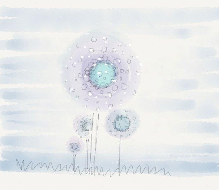 ds-iceflowers#01