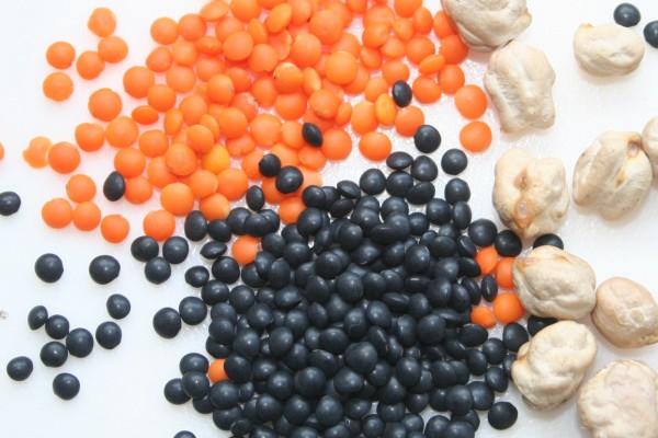 Rezepte mit Getreide und Hlsenfrchten  Livona  Der BioBlog