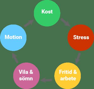 Livsstilsflöde, Livsstilsvägledning, Livsstilsförändring, Livsstil